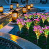 Garden Decoration Led Solar Chrysanthemum Lamp Outdoor Colorful Light Solar Small Wild Flower Landscape Courtyard Lawn Lamp review
