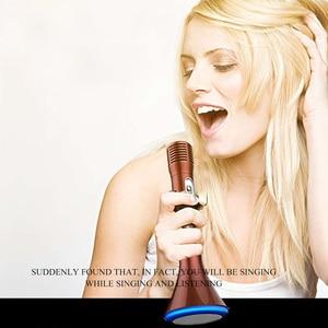 Image 4 - Handheld Accessories Sound LED Lights Bluetooth Professional Wireless Singing KTV Speech Speaker Radio Microphone