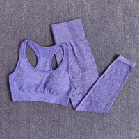 BraPantsPurple - Women Seamless Yoga Set Fitness Sports Suits