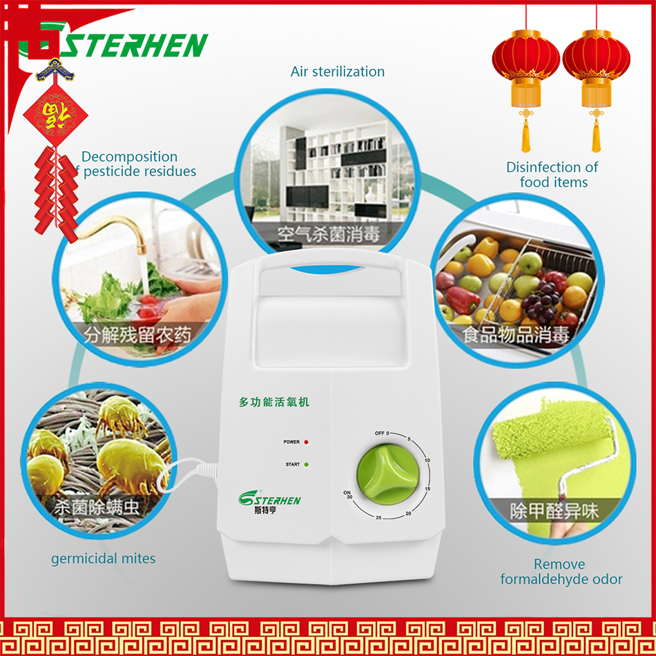 Sterhen Ozone Generator Vegetable Sterilizer Ozone Disinfector Air Purifier Ozone Output 400mg/h