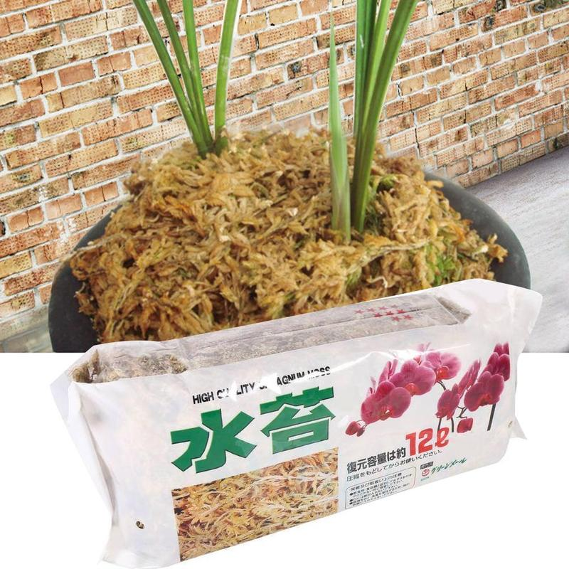 12L Nutrition Organic Fertilizer Sphagnum Moss Moss For Orchid Musgo Sphagnum Supplies Sphagnum Phalaenopsis Flower Garden