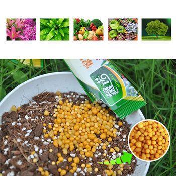 10g uniwersalny granulat cząstek roślin żywności nawóz o spowolnionym uwalnianiu dla domu ogród kwiat doniczkowy roślin warzyw soczyste tanie i dobre opinie CN (pochodzenie) Granulowane C5AD5AC200611 Nawóz wieloskładnikowy