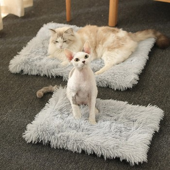 Cats And Dogs Warm Plush Blanket 1