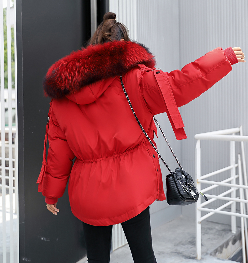 Korean Style 2019 Winter Jacket Women Cotton Padded Hooded With Fur Fe_B9_20