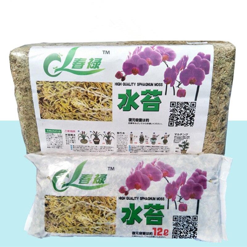 Натуральный Мох, садовые поставки, увлажняющее питание, органическое удобрение для орхидеи фаленопсис, мусго, цветочный горшок для декорирования