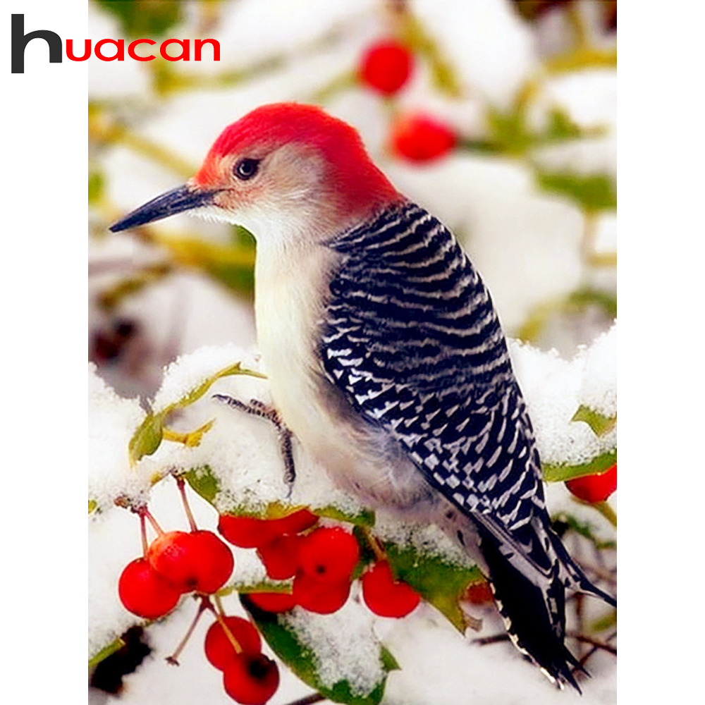 Huacan New Diamond Embroidery 2019 Bird Diamond Painting Full Square Arrival Winter Home Decoration Rhinestones Pictures