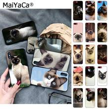 MaiYaCa pet gato siamês Moda de Luxo Caixa Do Telefone para Apple iphone 11 pro 8 7 66S Plus X 5S SE XS XR XS MAX Celulares(China)