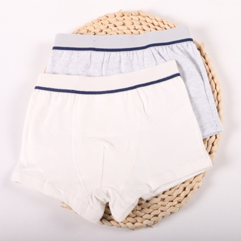 2Pcs/Lot Boys Underwear Pure Color Kids Shorts Panties Cotton Baby Children Boxer for Teenager Underpants 2-10Y 4