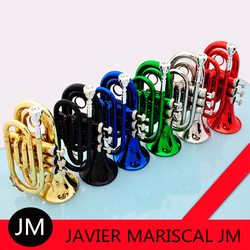 JM Mini Pocket Trumpet Bb Flat Brass Wind Instrument with Mouthpiece Gloves Cleaning Cloth Carrying Case