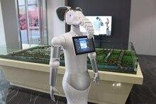 Robot de service intelligent pour centre commercial et hôtel, robot de réception à taille humaine, service de bienvenue