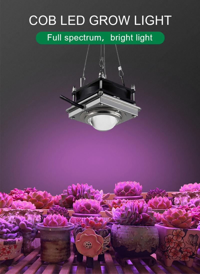 COB LED Hydroponic Plant Growth Light 50W Full Spectrum 220V Ultraviolet Plant Light Nursery Greenhouse Vegetable Planting