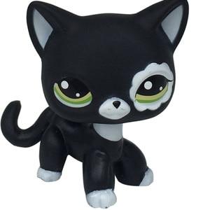 Лпс стоячки кошки Игрушки для кошек lps, редкие подставки, маленькие короткие волосы, котенок, розовый#2291, серый#5, черный#994,, коллекция фигурок для питомцев - Цвет: 2249
