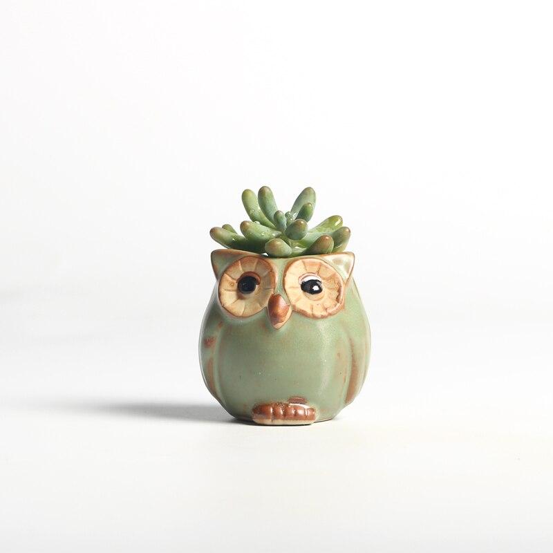 5 Pcs/Set Creative Ceramic Owl Shape Mini Flower Pots creative flower pot  plant   ceramic   farmhouse decor