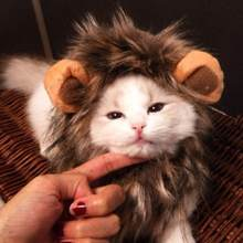 Funny Cute Cat Costume Lion Mane Wig Cap Hat For Cat Dog Halloween Christmas Clothes Fancy Dress With Ears Cat Clothes Cosplay(China)