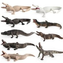 סימולציה Wild תנין איור אסיפה צעצועי תנין פראי בעלי החיים פעולה דמויות ילדי בעלי החיים רך גומי צעצועים