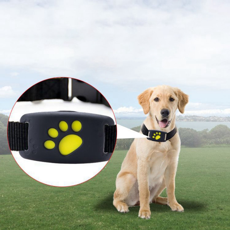 Pet GPS Tracker Dog Cat Collar Water-Resistant GPS Callback Function USB Charging GPS Trackers Fit For All Dogs