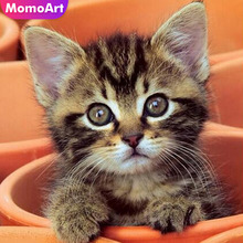 MomoArt 5D Diamond Painting Cat Mosaic Full Drill Square Embroidery Animal Gift Home Decoration