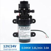 12V Micro DC Electric Spray Pump Fight Drugs Atomization Small Pump High Pressure Self priming Pump