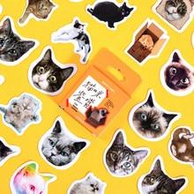 Autocollants chat papillon bureau école, étiquette autocollante kawaii, pour carnet de notes, matériel de Scrapbooking, pour journal intime, esthétique, 45 pièces