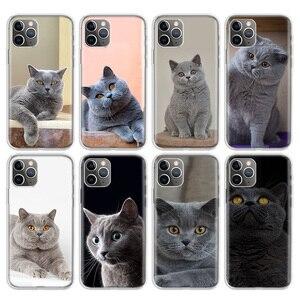 Чехол для Apple iphone 11 Pro 7 7G 8 8G 6S 6 6G X Xr Xs Max Plus + 5G 5S SE, британский короткий чехол