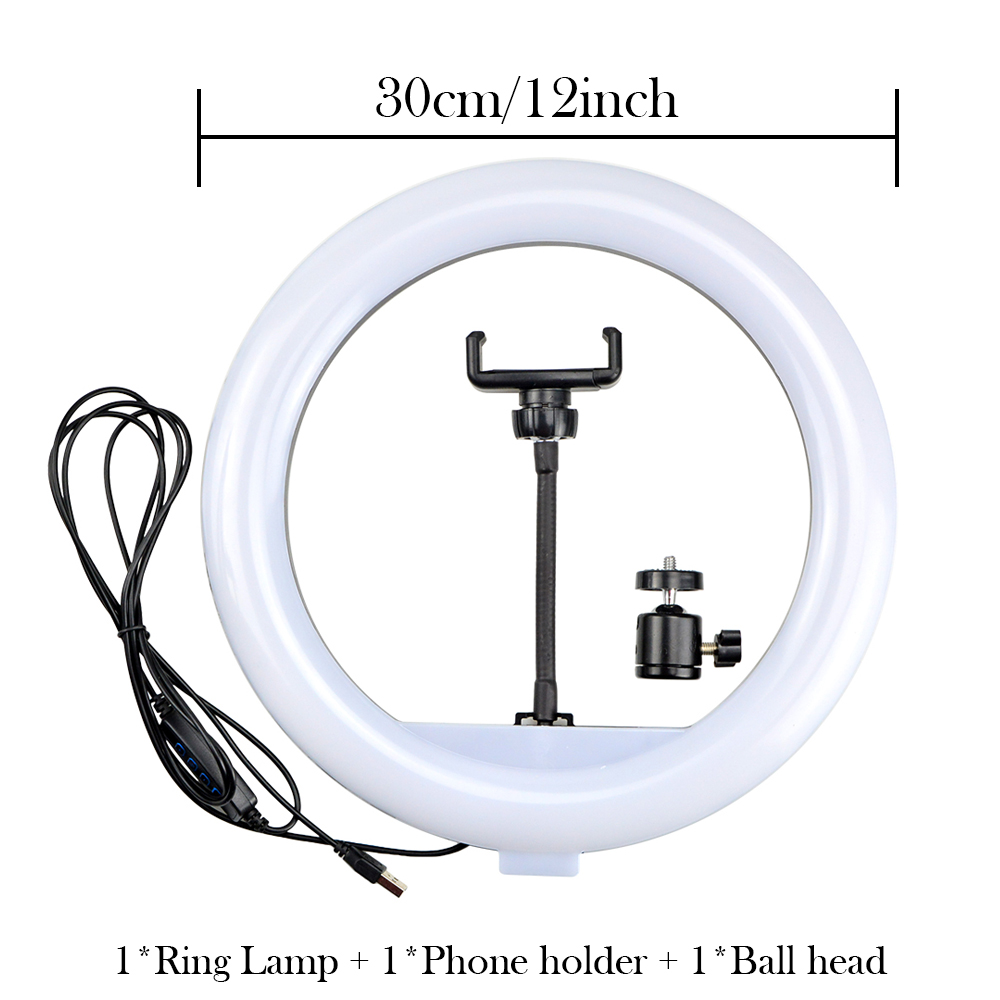 30cm Lamp only