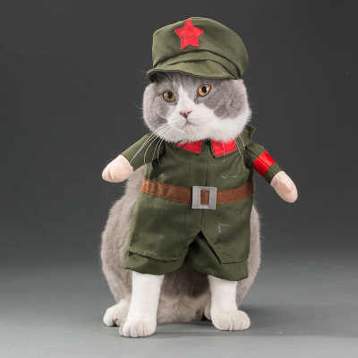 Gato bonito cosplay traje halloween pirata roupas festa papel jogar roupas pet cachorro gatinho roupa terno