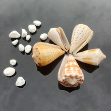 Jewelry-Making Necklace Nautical-Decor Seashells Natural Conch Tabby-Shell Pendant Beach-Ornaments