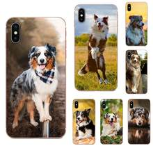 Australian Shepherd Shiba Inu Dog Soft Capa For Galaxy Note 10 A10E A10S A20S A30S A40S A50S A6S A70S A730 A8S M30S S2 S3 Plus(China)
