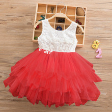 Kids Baby Girls Dress Flower Embroidery Clothing 2-6Y
