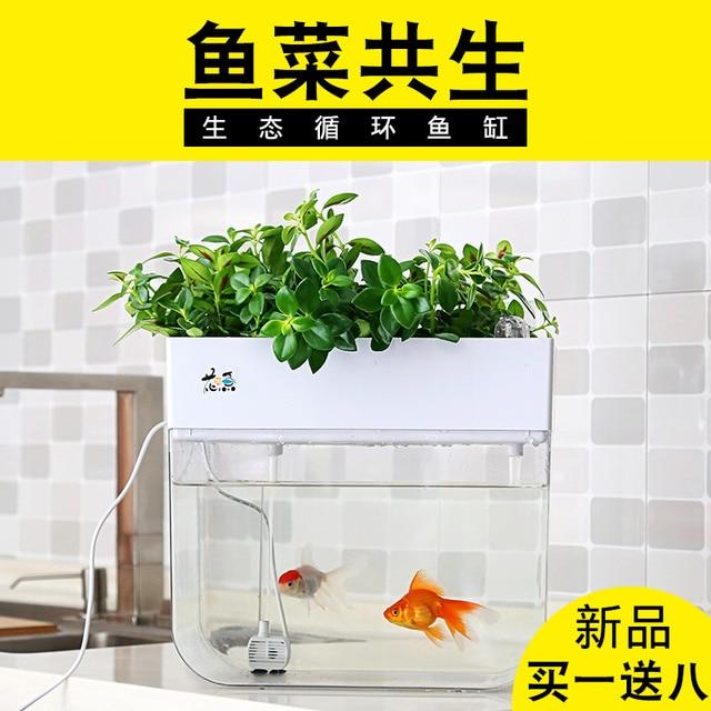 Wasser-freies Ökologische Goldfisch Tank Wohnzimmer Home Desktop Kleine Symbiose System Blume Muzy Faul Aquarium Fisch Box