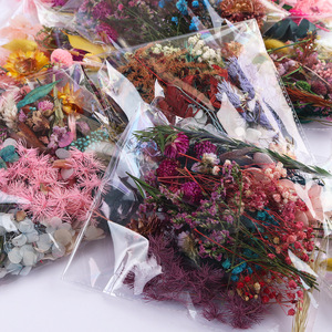 1 Bag Real Mix Dried Flowers for Resin Jewellery Dry Plants Pressed Flowers Making Craft DIY Photo Frame Accessories