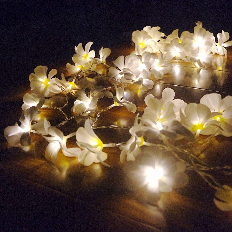 Luci Fai Da Te us $6.72 32% di sconto creativo fai da te frangipani luci della stringa del  led, batteria aa floreale illuminazione di festa, evento del partito