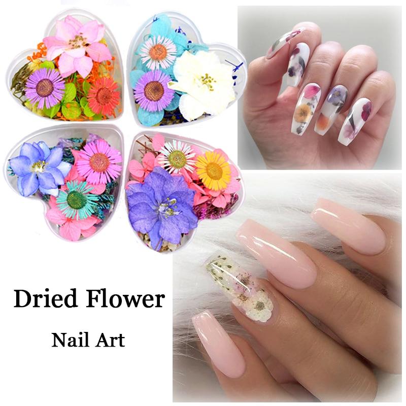 10Pcs/Bag Fasting Dried Flowers 3D Nail Art Decorations Colors Natural Flora UV Gel Polish Nail Design Manicure DIY Tool thumbnail