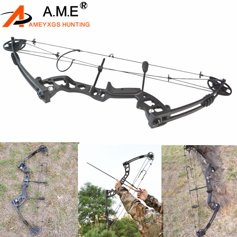 Archery 30-55 Lbs Compound Pulley Bow Adjustable 310fps  Hunting Outdoor Sports Hunting Shooting