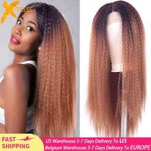 Perruque de cheveux moelleuse de couleur brune d'ombre avec la X-TRESS naturelle de délié