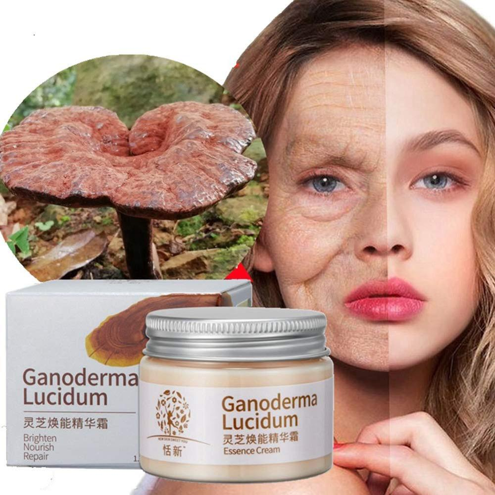 Natural Ganoderma Lucidum Essence Cream Face Care Anti Wrinkle Hydrating Oil-Control Night Facial Mask Skin Care Cream
