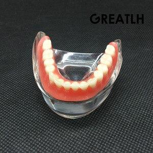 Image 3 - Aparelho mandibular dental interior, modelo mandibular mandibular com estudo de ensino dental de restauração de instrumentos