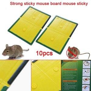Image 4 - 10Pcs 마우스 보드 최대 끈적 접착제 마우스 트 랩퍼 설치류 쥐 뱀 버그 포수 해충 방제 비 독성 환경 친화적 인 호가 드 거부