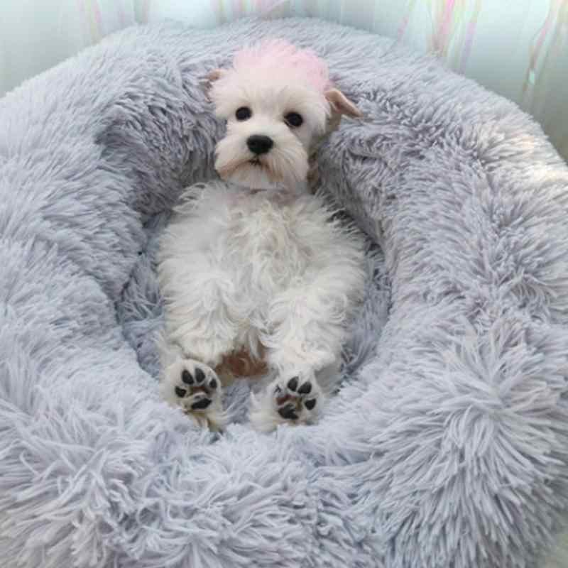 3 размера круглый шезлонг для домашних животных Подушка, кровать для собаки для маленьких, средних и больших собак и кошек зимняя Конура собачий коврик для домашних животных кровать