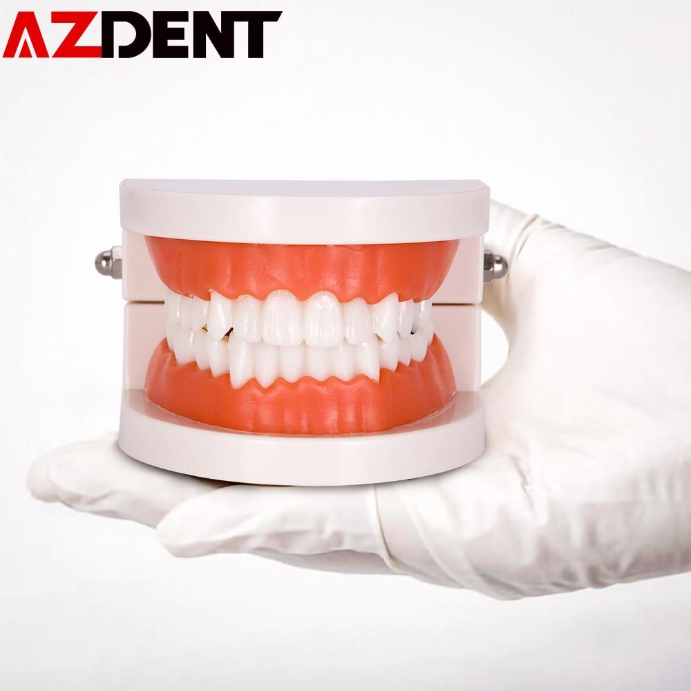 1pc Dental Implant Disease Teeth Model Restoration Bridge Orthodontic Dental Mold Dental Disease Teaching Study