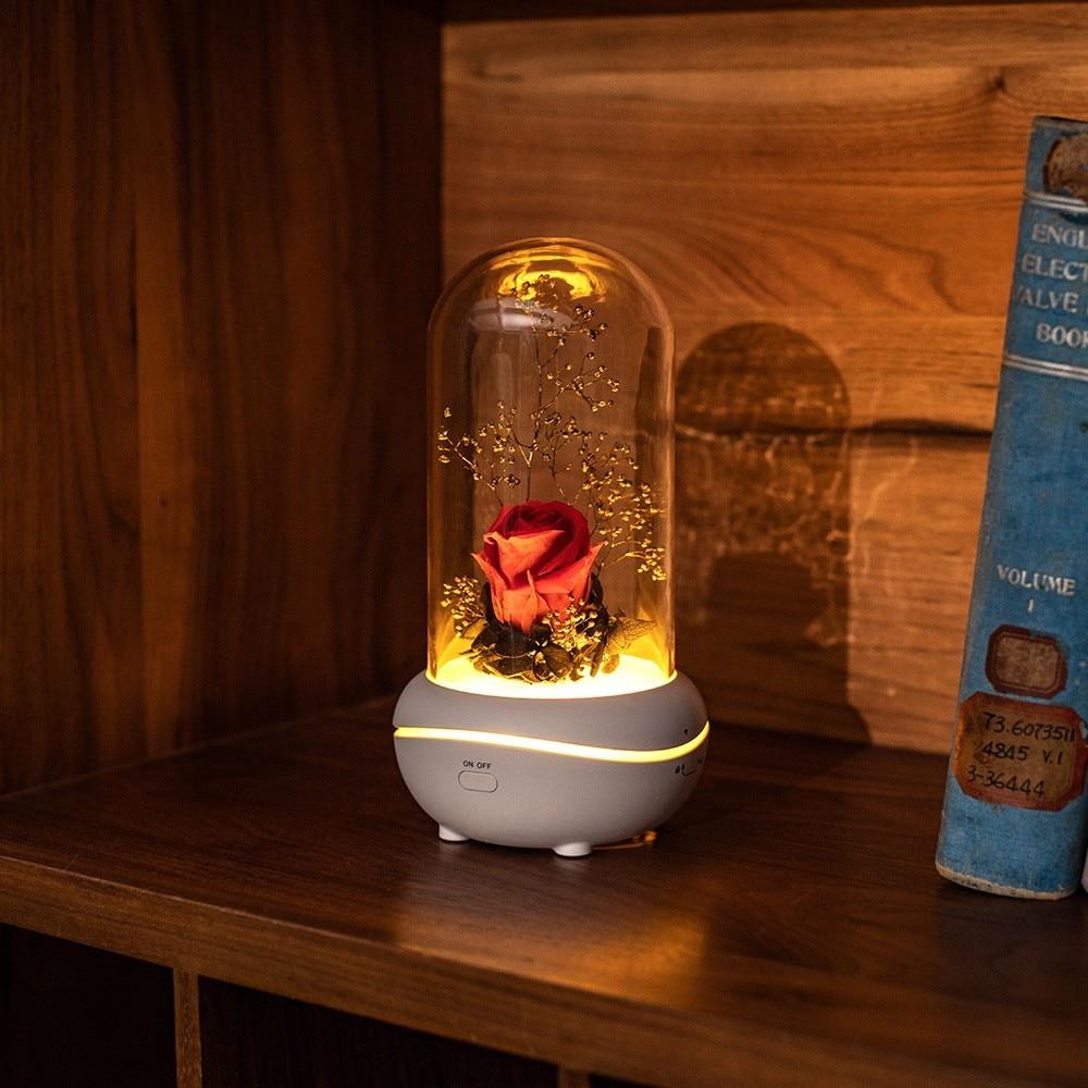 USB Night Light Fragrance Lamp Creative Mute Fragrance Lamp Mini Essential Oil Fragrance Lamp Holiday Gift Night Light Bedroom