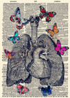 Lung butterfly Poste...