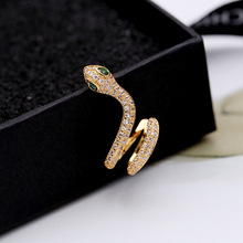 snake  micro inlaid zircon earrings simple fashion accessories indian estud punk gothic jewelry women