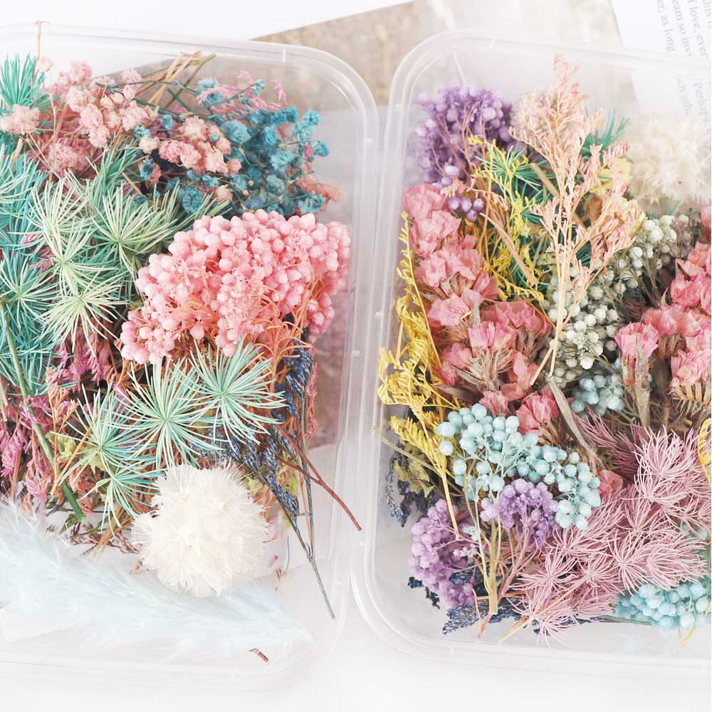 1-Box-Real-Dried-Flower-Dry-Plants-For--Candle-Epoxy-Resin-Pendant-Necklace-Making-Craft (2)