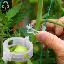 50/100 шт Пластик из мешочного тика зажимы для подвязки томатов Поддерживает одновременное подключение растений лозы из мешочного тика скобы для ветвей парниковых овощей садовый зажим для растений ZXH