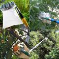 Metall Obst Picker Set Edelstahl Teleskop Rohr Obst Picker Bequem Apple Peach Hohe Baum Picking Werkzeuge-in Bewässerungs-Kits aus Heim und Garten bei