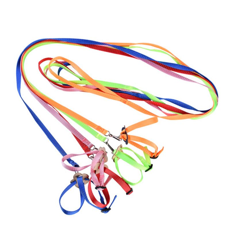 Portable New Parrot Bird Hamster Turtle Lizard Traction Rope Reins 8-shaped Pet Strap Leash 95AA