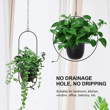 Hanging-Basket Flower-Pot Bonsai-Decor Plant-Holder Balcony Tabletop-Plants Glass Garden