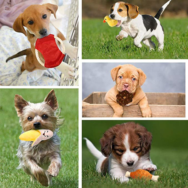 Dog Cute Toys 6