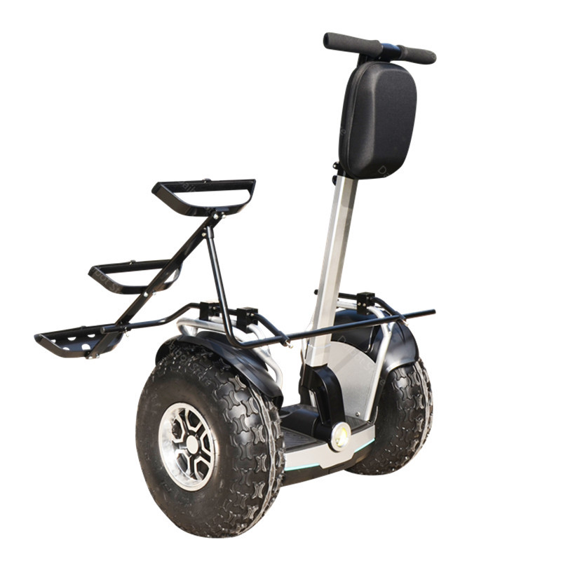 New Golf Electric Cart Two Wheeled Self Balancing Scooters With APP 19 Inch 1200W 60V Off Road Golf Electric Scooter For Adults  (4)
